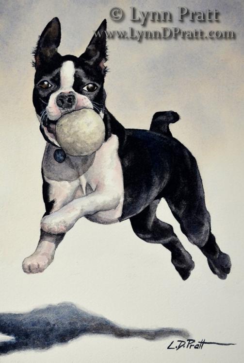 dog wendel 6x9 watermark