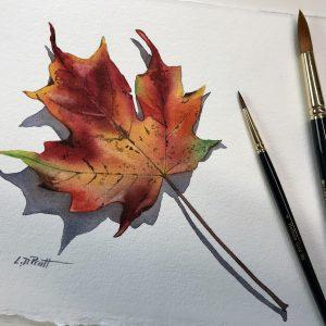 1fall leaf