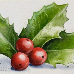 holly berries2